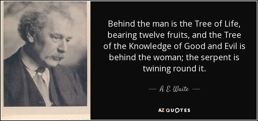 Behind the man is the Tree of Life, bearing twelve fruits, and the Tree of the Knowledge of Good and Evil is behind the woman; the serpent is twining round it. - A. E. Waite
