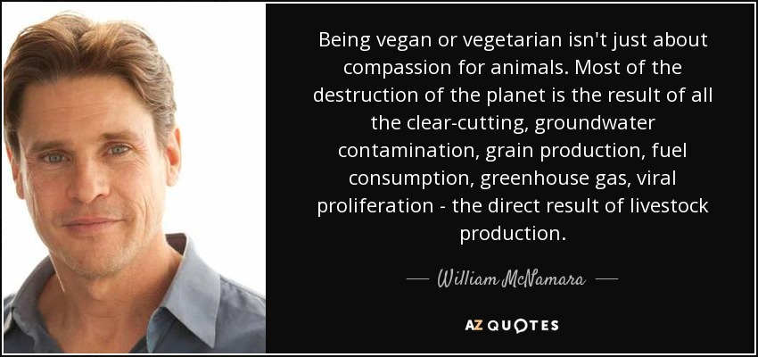 Being vegan or vegetarian isn't just about compassion for animals. Most of the destruction of the planet is the result of all the clear-cutting, groundwater contamination, grain production, fuel consumption, greenhouse gas, viral proliferation - the direct result of livestock production. - William McNamara
