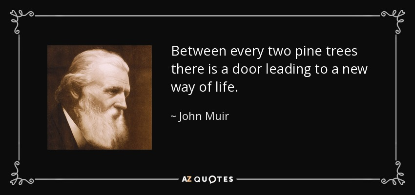 Between every two pine trees there is a door leading to a new way of life. - John Muir