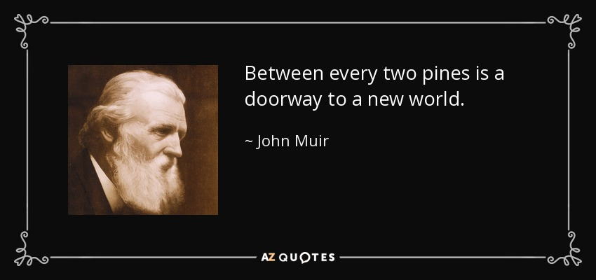 Between every two pines is a doorway to a new world. - John Muir