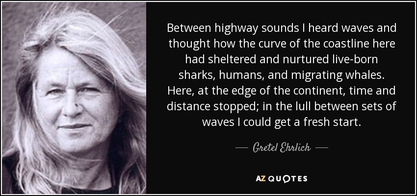Between highway sounds I heard waves and thought how the curve of the coastline here had sheltered and nurtured live-born sharks, humans, and migrating whales. Here, at the edge of the continent, time and distance stopped; in the lull between sets of waves I could get a fresh start. - Gretel Ehrlich