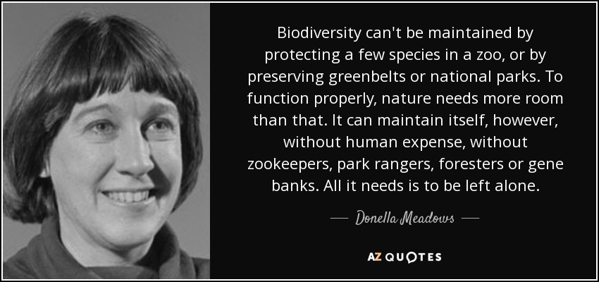 Biodiversity can't be maintained by protecting a few species in a zoo, or by preserving greenbelts or national parks. To function properly, nature needs more room than that. It can maintain itself, however, without human expense, without zookeepers, park rangers, foresters or gene banks. All it needs is to be left alone. - Donella Meadows