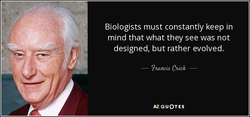 Biologists must constantly keep in mind that what they see was not designed, but rather evolved. - Francis Crick