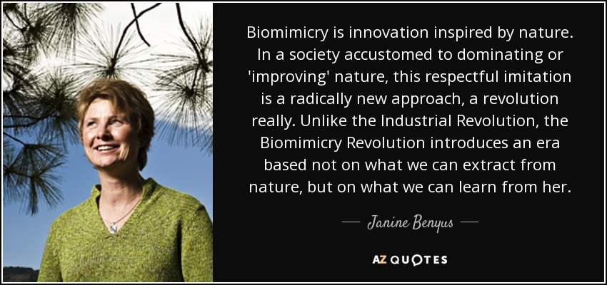 Biomimicry is innovation inspired by nature. In a society accustomed to dominating or 'improving' nature, this respectful imitation is a radically new approach, a revolution really. Unlike the Industrial Revolution, the Biomimicry Revolution introduces an era based not on what we can extract from nature, but on what we can learn from her. - Janine Benyus