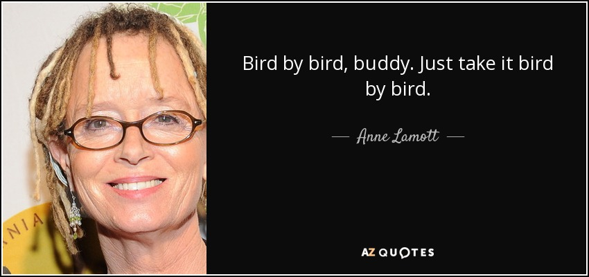Bird by bird, buddy. Just take it bird by bird. - Anne Lamott
