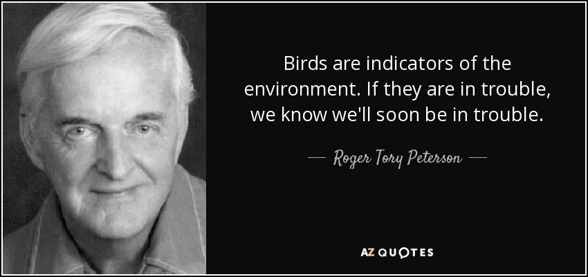Birds are indicators of the environment. If they are in trouble, we know we'll soon be in trouble. - Roger Tory Peterson