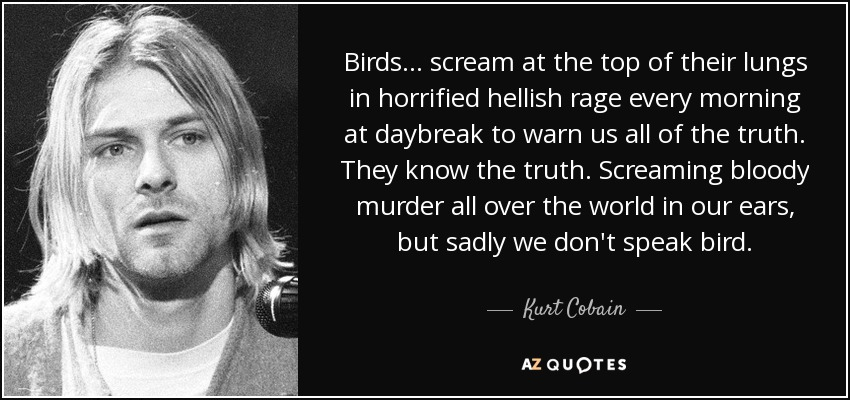 Birds... scream at the top of their lungs in horrified hellish rage every morning at daybreak to warn us all of the truth. They know the truth. Screaming bloody murder all over the world in our ears, but sadly we don't speak bird. - Kurt Cobain