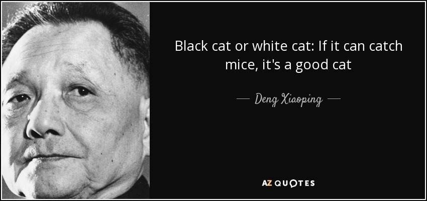 Black cat or white cat: If it can catch mice, it's a good cat - Deng Xiaoping