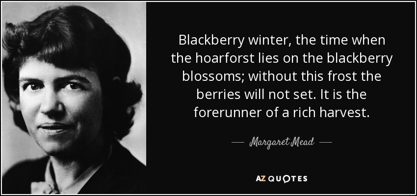 Blackberry winter, the time when the hoarforst lies on the blackberry blossoms; without this frost the berries will not set. It is the forerunner of a rich harvest. - Margaret Mead
