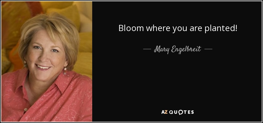 Bloom where you are planted! - Mary Engelbreit