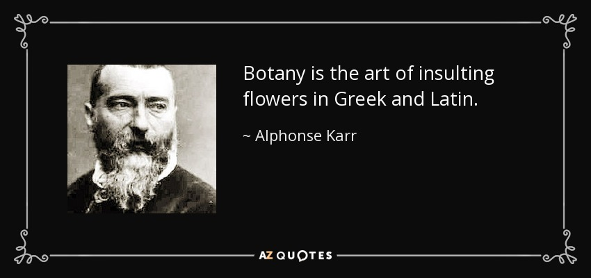 Botany is the art of insulting flowers in Greek and Latin. - Alphonse Karr