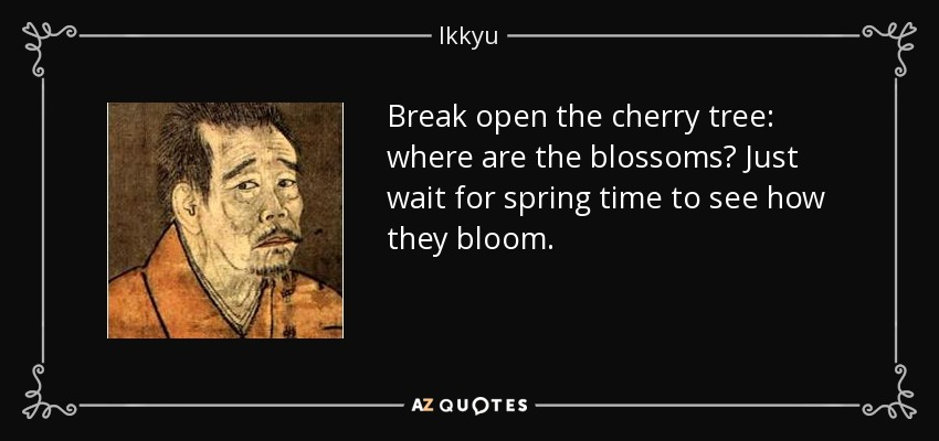 Break open the cherry tree: where are the blossoms? Just wait for spring time to see how they bloom. - Ikkyu