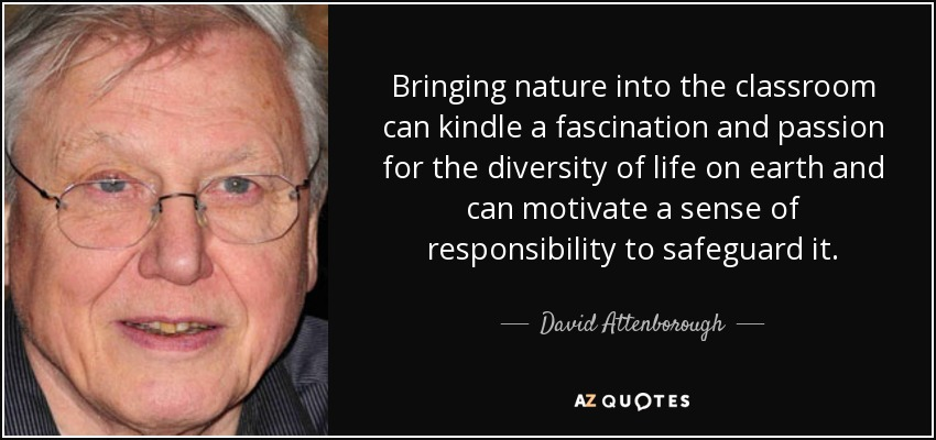 Bringing nature into the classroom can kindle a fascination and passion for the diversity of life on earth and can motivate a sense of responsibility to safeguard it. - David Attenborough