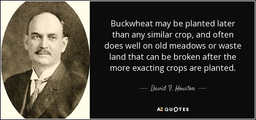Buckwheat may be planted later than any similar crop, and often does well on old meadows or waste land that can be broken after the more exacting crops are planted. - David F. Houston