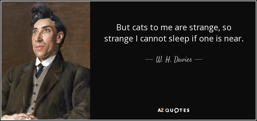 But cats to me are strange, so strange I cannot sleep if one is near. - W. H. Davies