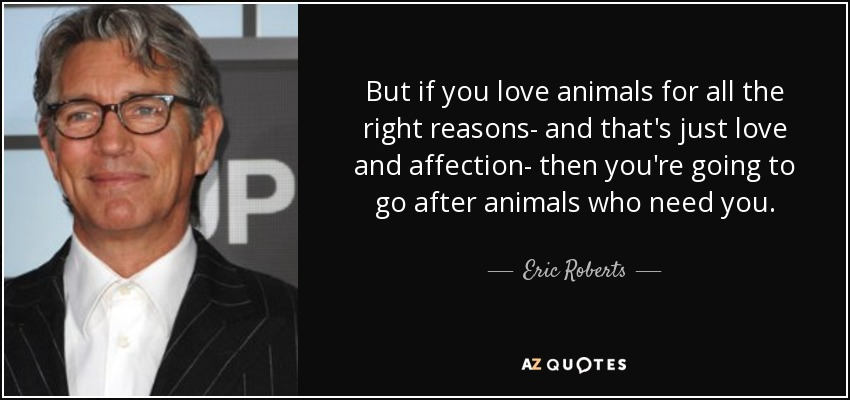 But if you love animals for all the right reasons- and that's just love and affection- then you're going to go after animals who need you. - Eric Roberts