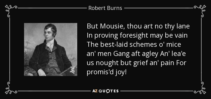But Mousie, thou art no thy lane In proving foresight may be vain The best-laid schemes o' mice an' men Gang aft agley An' lea'e us nought but grief an' pain For promis'd joy! - Robert Burns