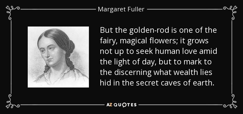But the golden-rod is one of the fairy, magical flowers; it grows not up to seek human love amid the light of day, but to mark to the discerning what wealth lies hid in the secret caves of earth. - Margaret Fuller