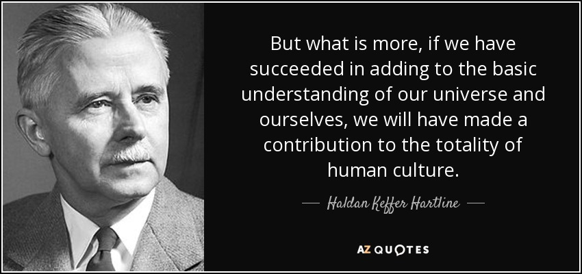 But what is more, if we have succeeded in adding to the basic understanding of our universe and ourselves, we will have made a contribution to the totality of human culture. - Haldan Keffer Hartline