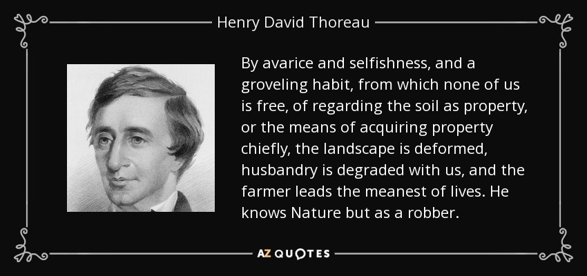 short essays by thoreau Read thoreau's major essays online - reform essays (civil disobedience), walking essays (a winter walk) and natural history essays (wild apples.