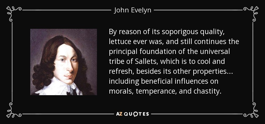 By reason of its soporigous quality, lettuce ever was, and still continues the principal foundation of the universal tribe of Sallets, which is to cool and refresh, besides its other properties... including beneficial influences on morals, temperance, and chastity. - John Evelyn
