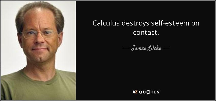 Calculus destroys self-esteem on contact. - James Lileks
