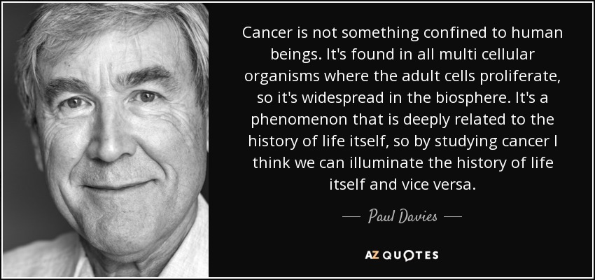 Cancer is not something confined to human beings. It's found in all multi cellular organisms where the adult cells proliferate, so it's widespread in the biosphere. It's a phenomenon that is deeply related to the history of life itself, so by studying cancer I think we can illuminate the history of life itself and vice versa. - Paul Davies