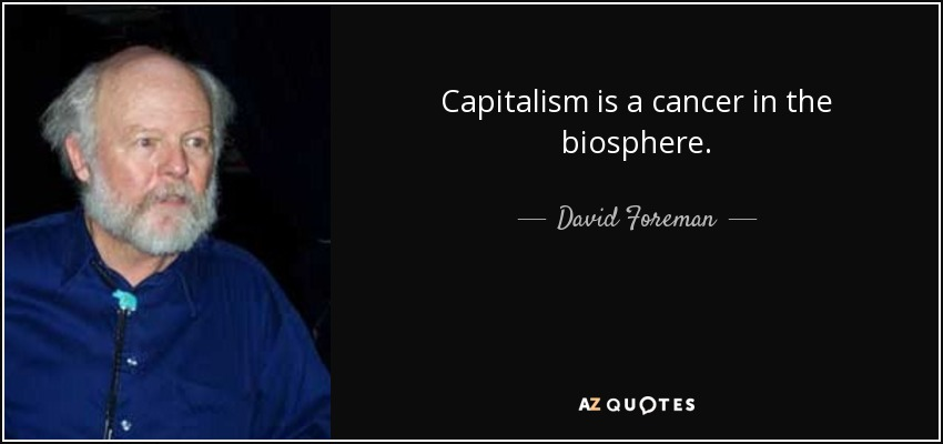 capitalism destroys nature and human nature essay Nature essay for class 1, 2 we should not destroy the originality of the nature and should not our nature to relationship between nature and human.