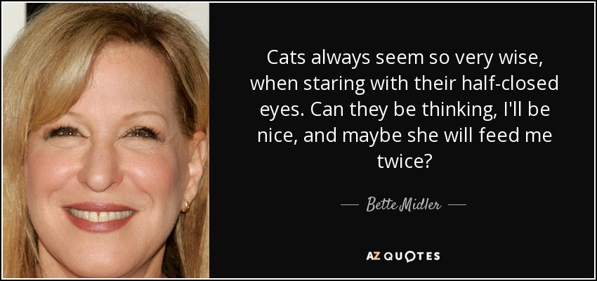 Cats always seem so very wise, when staring with their half-closed eyes. Can they be thinking, I'll be nice, and maybe she will feed me twice? - Bette Midler