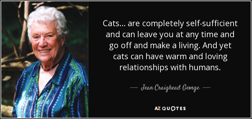 Cats ... are completely self-sufficient and can leave you at any time and go off and make a living. And yet cats can have warm and loving relationships with humans. - Jean Craighead George