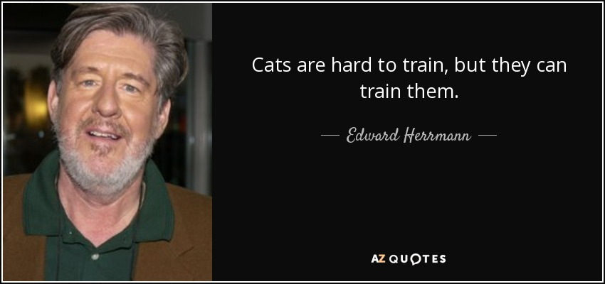 Cats are hard to train, but they can train them. - Edward Herrmann
