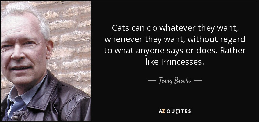 Cats can do whatever they want, whenever they want, without regard to what anyone says or does. Rather like Princesses. - Terry Brooks