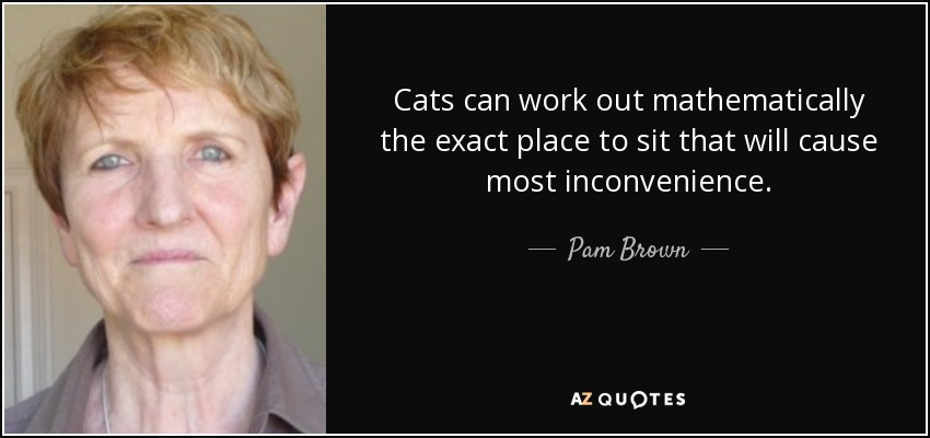 Cats can work out mathematically the exact place to sit that will cause most inconvenience. - Pam Brown