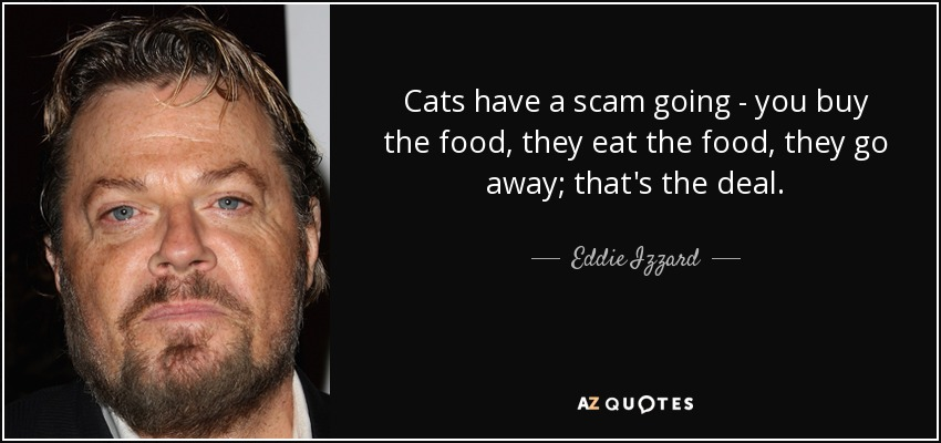Cats have a scam going - you buy the food, they eat the food, they go away; that's the deal. - Eddie Izzard