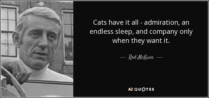 Cats have it all - admiration, an endless sleep, and company only when they want it. - Rod McKuen