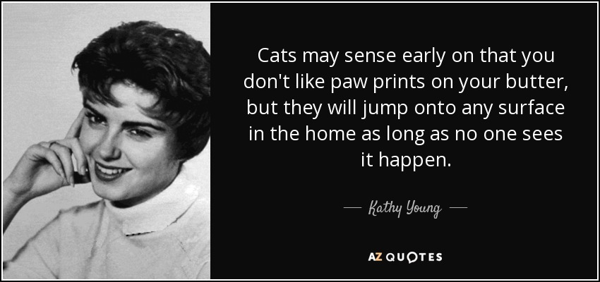 Cats may sense early on that you don't like paw prints on your butter, but they will jump onto any surface in the home as long as no one sees it happen. - Kathy Young