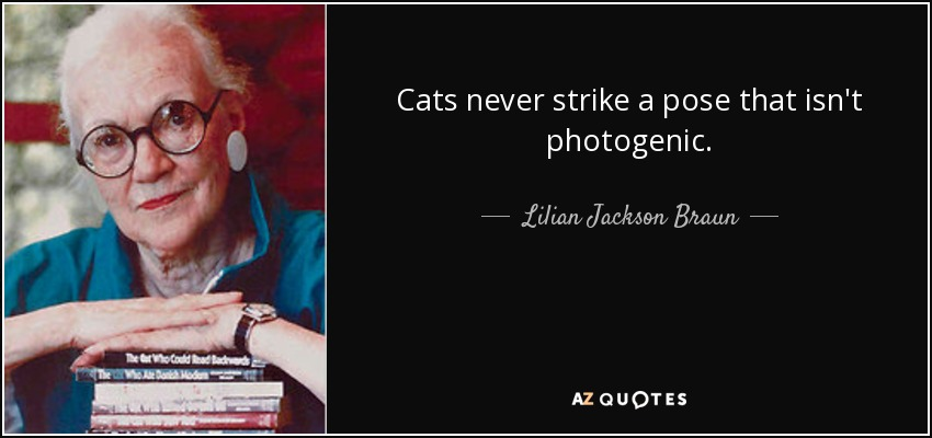 Cats never strike a pose that isn't photogenic. - Lilian Jackson Braun