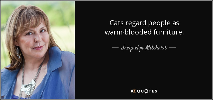 Cats regard people as warm-blooded furniture. - Jacquelyn Mitchard
