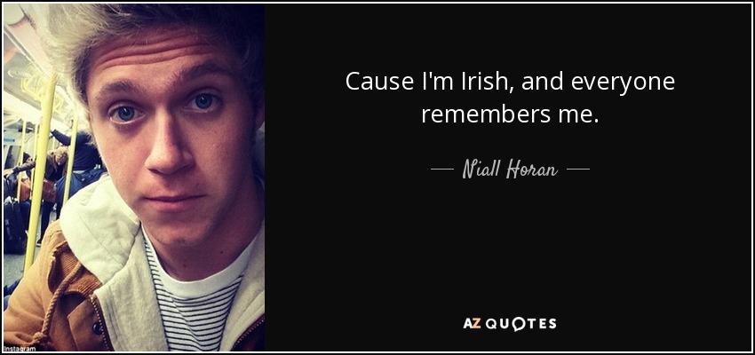 Cause I'm Irish, and everyone remembers me. - Niall Horan