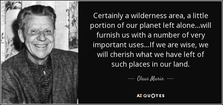 Certainly a wilderness area, a little portion of our planet left alone…will furnish us with a number of very important uses…If we are wise, we will cherish what we have left of such places in our land. - Olaus Murie