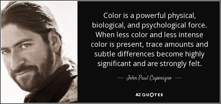 Color is a powerful physical, biological, and psychological force. When less color and less intense color is present, trace amounts and subtle differences become highly significant and are strongly felt. - John Paul Caponigro