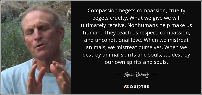 Compassion begets compassion, cruelty begets cruelty. What we give we will ultimately receive. Nonhumans help make us human. They teach us respect, compassion, and unconditional love. When we mistreat animals, we mistreat ourselves. When we destroy animal spirits and souls, we destroy our own spirits and souls. - Marc Bekoff