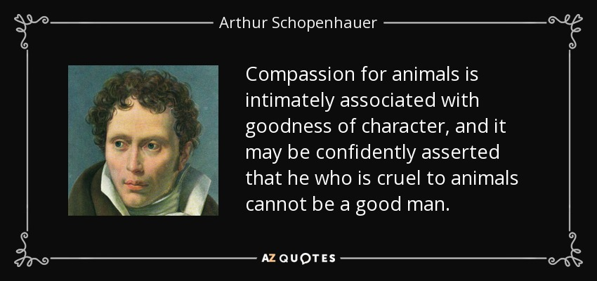 Compassion for animals is intimately associated with goodness of character, and it may be confidently asserted that he who is cruel to animals cannot be a good man. - Arthur Schopenhauer