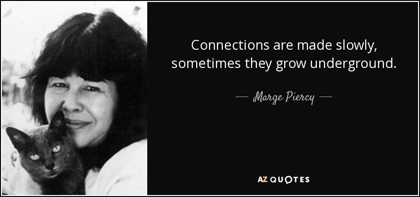 Connections are made slowly, sometimes they grow underground. - Marge Piercy