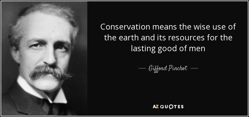 Conservation means the wise use of the earth and its resources for the lasting good of men - Gifford Pinchot