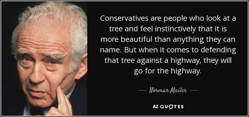 Conservatives are people who look at a tree and feel instinctively that it is more beautiful than anything they can name. But when it comes to defending that tree against a highway, they will go for the highway. - Norman Mailer