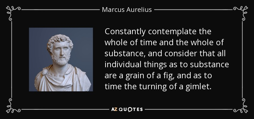 Constantly contemplate the whole of time and the whole of substance, and consider that all individual things as to substance are a grain of a fig, and as to time the turning of a gimlet . - Marcus Aurelius