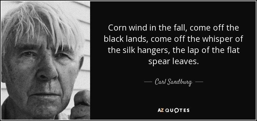 Corn wind in the fall, come off the black lands, come off the whisper of the silk hangers, the lap of the flat spear leaves. - Carl Sandburg