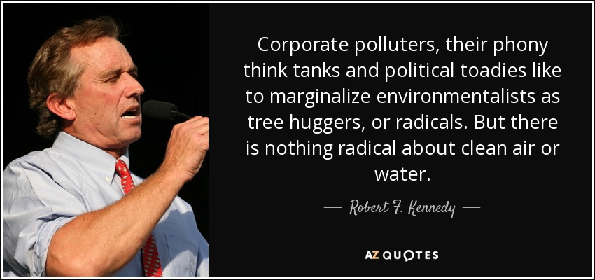 Corporate polluters, their phony think tanks and political toadies like to marginalize environmentalists as tree huggers, or radicals. But there is nothing radical about clean air or water. - Robert F. Kennedy, Jr.