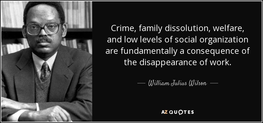 Crime, family dissolution, welfare, and low levels of social organization are fundamentally a consequence of the disappearance of work. - William Julius Wilson